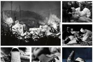 Thảm họa 'vịnh thủy ngân' và bệnh lạ khủng khiếp nhất lịch sử Nhật Bản