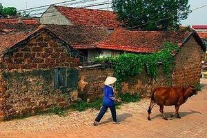 Kỳ cuối: Để mỗi làng, xã thực sự là nông thôn văn hóa