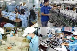 Phát triển kinh tế kinh tế tập thể: Phải có doanh nghiệp làm đầu kéo