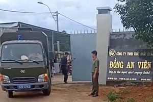 Triệt phá xưởng 13 tấn tiền chất ma túy của người Trung Quốc: Nhân chứng nói gì?