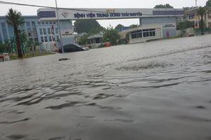 6 người chết, 5 người bị thương do mưa, lũ ở phía Bắc