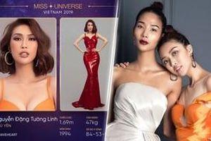 Tường Linh bất ngờ dự thi Miss Universe Vietnam 2019, tái ngộ huấn luyện viên Hoàng Thùy