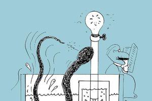 Lươn phát ra điện 860 volt, sao không nuôi để thắp sáng trong nhà?