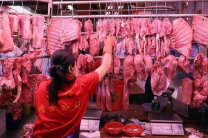Brazil và châu Âu có dập được cơn khát thịt lợn của Trung Quốc?