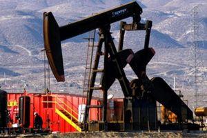 Giá xăng dầu hôm nay 13/9 quay đầu giảm mạnh