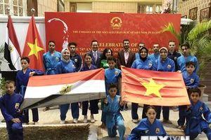 Việt Nam và Ai Cập hướng tới gắn kết 'từ con tim tới khối óc'