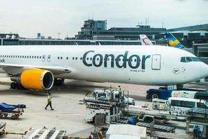 Máy bay phải hạ cánh khẩn cấp vì phi công làm... đổ cà phê