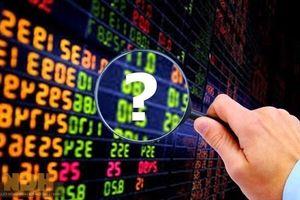 Vi phạm báo cáo giao dịch, bốn nhà đầu tư bị phạt hơn 200 triệu đồng
