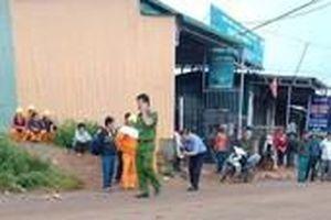 Điện lực báo cáo vụ hai học sinh tử vong vì vướng dây điện