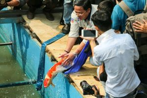 Thả gần 100 con cá Koi xuống sông Tô Lịch và Hồ Tây