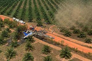 Ít nhất 7 người thiệt mạng trong vụ rơi máy bay tại Colombia