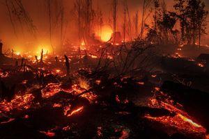Amazon chưa tắt lửa, Indonesia sôi sục hàng nghìn đám cháy