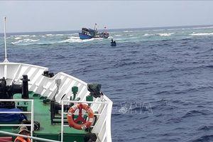 46 ngư dân Quảng Ngãi gặp nạn trên biển đã trở về đất liền an toàn