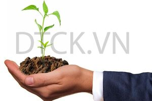Nhận định thị trường phiên 19/9: Chú ý nhóm Bất động sản, Cảng biển và Dầu khí