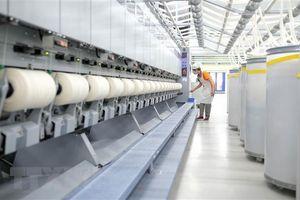 Nhà máy sợi lông cừu Đà Lạt xuất khẩu lô hàng đầu tiên sang Nhật