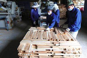 Hợp tác 3 bên nâng cao năng suất lao động ngành gỗ