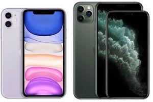 IPhone 11 'đẹp đến từng pixel'