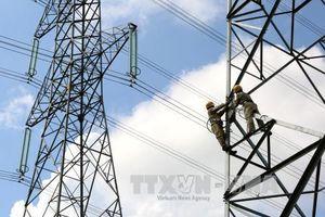 Quảng Ninh: Xe trộn bê tông làm đứt dây điện cao thế khiến hai công nhân bị bỏng