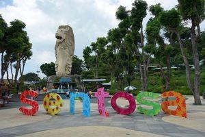 Bí mật bất ngờ tượng sư tử biển ở Singapore sắp dỡ bỏ