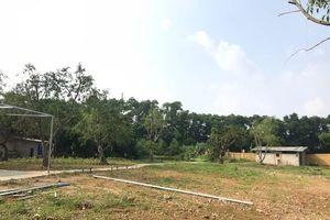 Bất động sản Cổng Vàng 'bánh vẽ' Golden Lake Hòa Lạc: Dự án 'ma' kiểu Alibaba ở Hà Nội