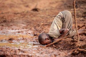 Thông điệp về môi trường thế giới qua những bức ảnh đoạt giải CIWEM 2019