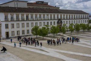 Trường ĐH lâu đời nhất Bồ Đào Nha cấm thịt bò để chống biến đổi khí hậu