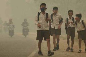 Khói bụi cháy rừng đe dọa sức khỏe của hơn 10 triệu trẻ em Indonesia