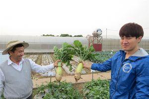 Cơ hội hợp tác nông nghiệp Việt Nam – Hàn Quốc