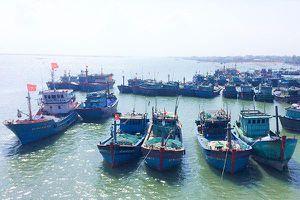 Các tỉnh phía Nam: Tích cực gỡ 'thẻ vàng' thủy sản của EC