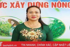 Đại biểu 'bật mí' nhiều cách làm hay, kinh nghiệm quý trong xây dựng NTM ở Hà Tĩnh