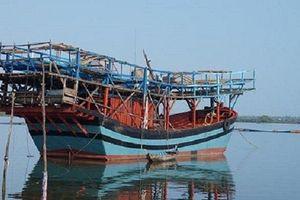 Quảng Ngãi: Ngư dân tàu câu mực mất tích trên biển
