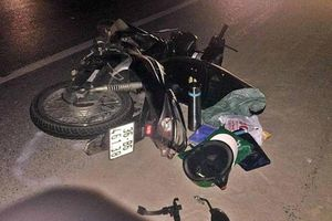 Truy tìm xe ô tô cán chết 2 người bỏ chạy khỏi hiện trường vụ tai nạn