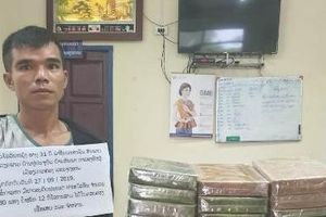 Đối tượng người Việt Nam và Lào câu kết 'mang' 32 bánh heroin vào Việt Nam