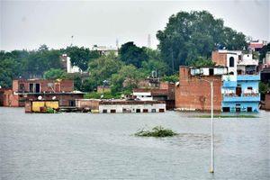 Gần 140 người thiệt mạng trong đợt mưa lớn kéo dài ở miền Đông Ấn Độ