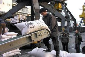 Hàn Quốc tiếp tục thảo luận với WFP về viện trợ gạo cho Bình Nhưỡng