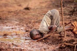 Những bức ảnh thắng giải cuộc thi 'Nhiếp ảnh gia môi trường năm 2019'