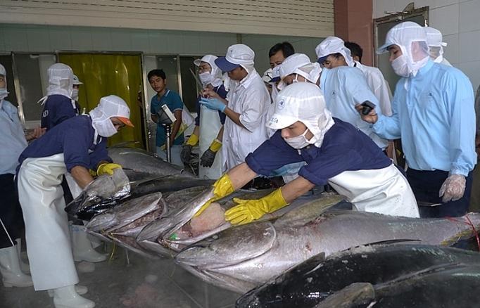 Xóa thẻ vàng IUU: Không mua hải sản bất hợp pháp