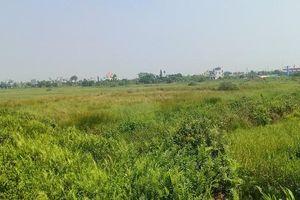 Thái Bình: Doanh nghiệp trúng đấu giá đất bỏ cuộc chơi, chấp nhận mất trắng 45 tỷ đồng đặt cọc