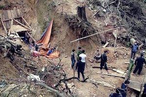 Vì sao nạn 'vàng tặc' ở Quảng Nam vẫn dai dẳng?