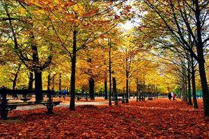 Đẹp nao lòng những thành phố quyến rũ nhất châu Âu vào thu