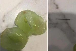 Úc: Phát hiện kim khâu trong trái nho