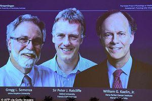 Giải Nobel Y Sinh 2019 vinh danh 3 nhà khoa học nghiên cứu tế bào