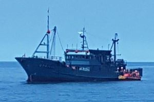 Tàu cá Triều Tiên bị chìm sau khi va chạm mạnh với tàu Nhật Bản