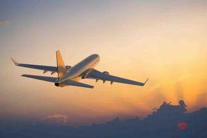 Bộ GTVT chấp thuận Vinpearl Air, còn chờ ý kiến Thủ tướng Chính phủ