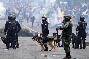 Tổng thống Ecuador ban hành lệnh giới nghiêm vì biểu tình gia tăng