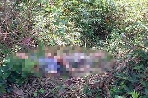 Lâm Đồng: Người dân phát hiện thi thể người đàn ông bên bờ suối