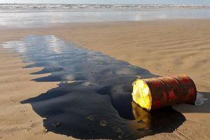 100 tấn dầu bí ẩn nhuộm đen bờ biển Brazil
