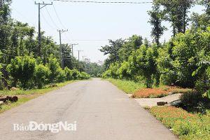 Cho vay xây dựng nông thôn mới tăng hơn 31%