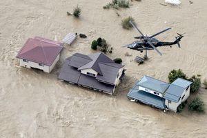 Ít nhất 19 người thiệt mạng tại Nhật Bản do siêu bão Hagibis