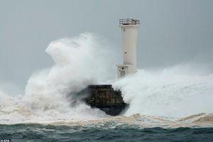 Nhật Bản tan hoang sau siêu bão 'Quái vật' mạnh nhất trong 60 năm